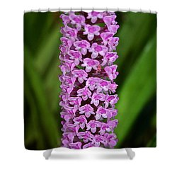 Purple Pillar Shower Curtain