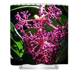 Purple Plant Shower Curtain