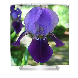 Shower Curtain featuring the digital art Purple Pleaser by Barbara S Nickerson