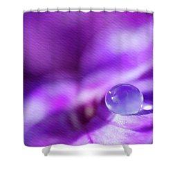 Purple Rain Drop Shower Curtain