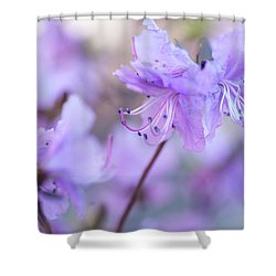 Shower Curtain featuring the photograph Purple Rhododendron 1. Spring Watercolors by Jenny Rainbow