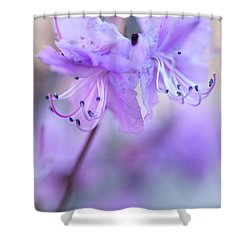 Shower Curtain featuring the photograph Purple Rhododendron. Spring Watercolors by Jenny Rainbow