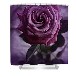 Purple Rose Of December Shower Curtain by Richard Cummings