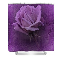 Purple Rose Of November No. 2 Shower Curtain by Richard Cummings