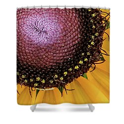 Shower Curtain featuring the photograph Purple Spirals by David Coblitz