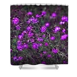 Purple Stars Shower Curtain
