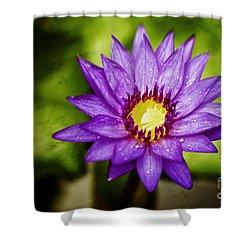 Purple Sunrise Shower Curtain by Scott Pellegrin