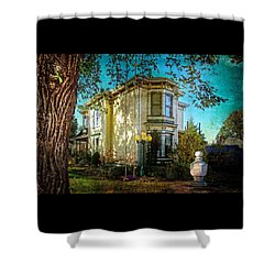 House With The Purple Swing Shower Curtain