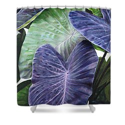 Purple Taro Shower Curtain by Sandra Blazel - Printscapes