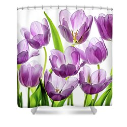 Shower Curtain featuring the photograph Purple Tulips by Rebecca Cozart