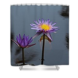 Purple Two-step Shower Curtain