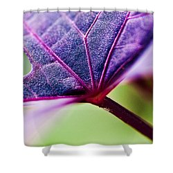 Purple Veins Shower Curtain by Christopher Holmes