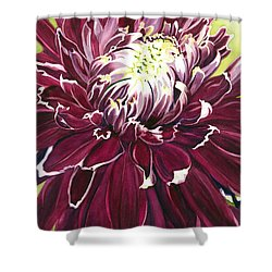 Purple Velvet Shower Curtain