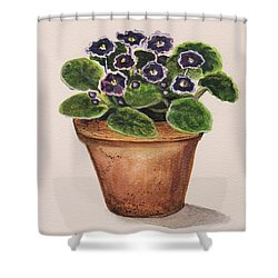 Purple Violets Shower Curtain