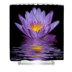Purple Water Lily Shower Curtain
