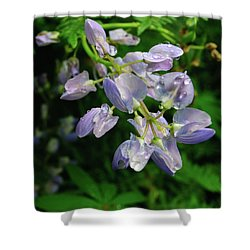 Shower Curtain featuring the photograph Purple Wildflower by Tikvah's Hope