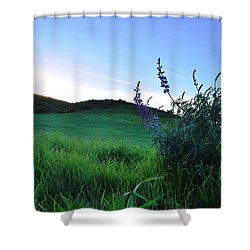 Shower Curtain featuring the photograph Purple Wildflowers In Beautiful Green Pastures by Matt Harang