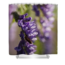 Purple Wildflowers Shower Curtain