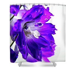 Shower Curtain featuring the photograph Purpled by David Sutton