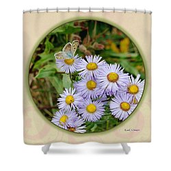 Purplish Copper On Wild Asters Shower Curtain