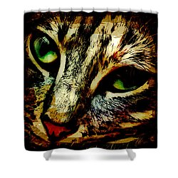 Purr-fect Love Shower Curtain by David G Paul