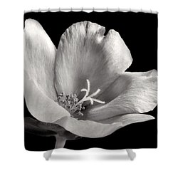 Shower Curtain featuring the photograph Purslane In Monochrome by David and Carol Kelly