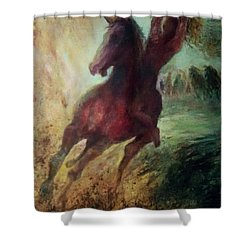pursuit of Avshalom Shower Curtain