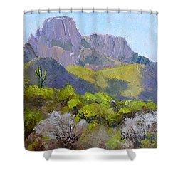 Pusch Ridge II Shower Curtain
