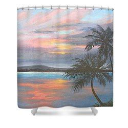 Pv Skies  Shower Curtain
