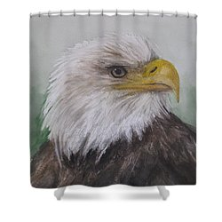 Pyrague Eagle Shower Curtain by Annie Poitras