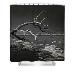 Pyramid Lake Bw 1366 Shower Curtain