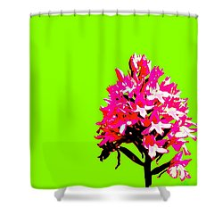 Green Pyramid Orchid Shower Curtain by Richard Patmore
