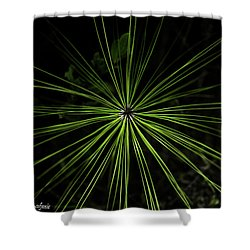 Pyrotechnics Or Pine Needles Shower Curtain