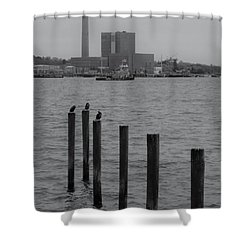 Q. River Shower Curtain by John Scates