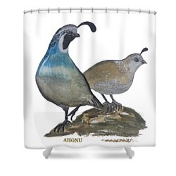 Quail Parents Wondering Shower Curtain