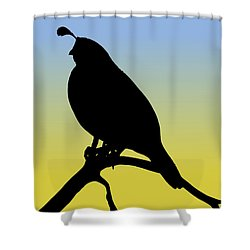 Quail Silhouette At Sunrise Shower Curtain