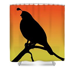Quail Silhouette At Sunset Shower Curtain