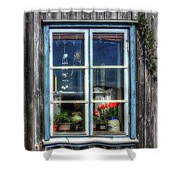 Quaint Window Shower Curtain