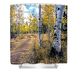 Aspens In Fall With Road Shower Curtain