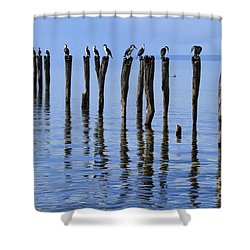 Shower Curtain featuring the photograph Quay Rest by Stephen Mitchell