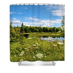 Shower Curtain featuring the photograph Queen Anne's Lace On The Moose River by David Patterson
