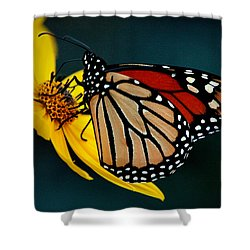 Queen Monarch 2 Shower Curtain
