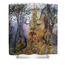 Queen Of The Fairies Shower Curtain
