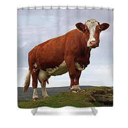 Queen Of The Mountain Shower Curtain