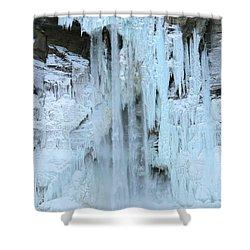 Queen's Throne Shower Curtain