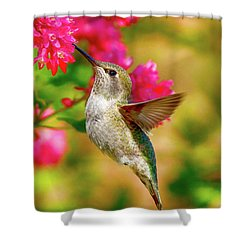 Quick Lunch Shower Curtain