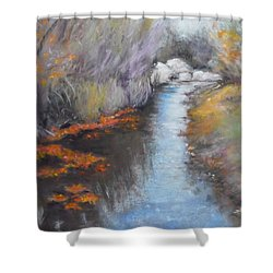 Quiet Arrival Shower Curtain