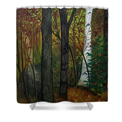 Quiet Autumn Woods Shower Curtain