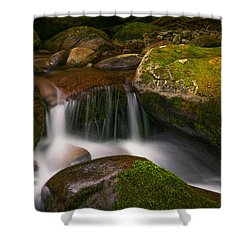 Quiet Beauty Shower Curtain