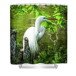Quiet Moments Of Elegance Shower Curtain by Karen Wiles